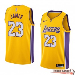 Camiseta Lebron James Los Angeles Lakers Home Edition
