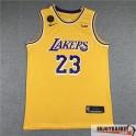 Camiseta Lebron James Los Angeles Lakers Icon Home